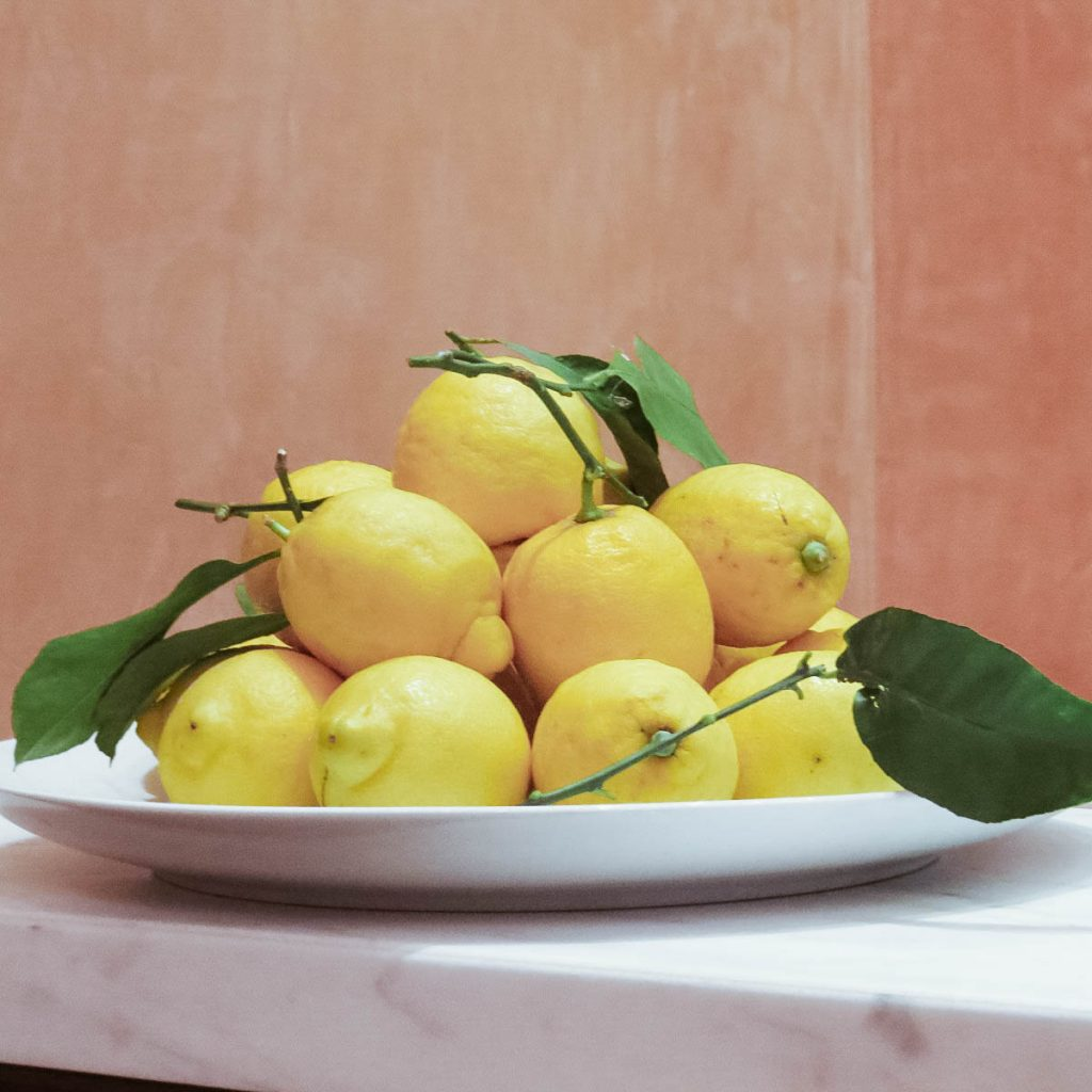 Lemons Spring Somerset House_ Lifestyle Enthusiast