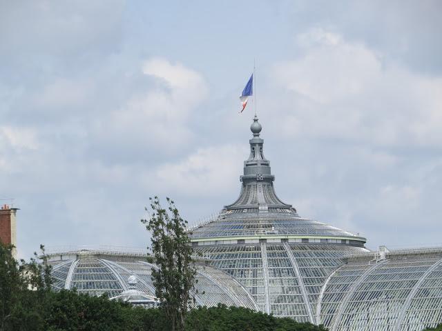 Lifestyle Enthusiast - Views in Paris