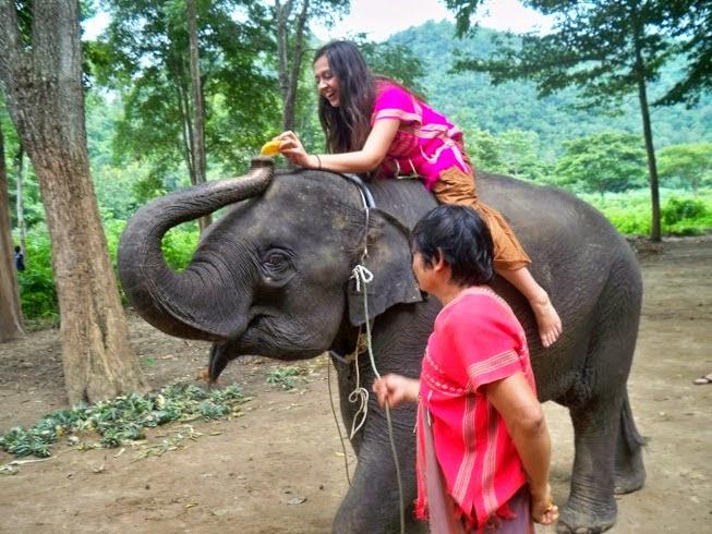 Lifestyle Enthusiast - Thailand - Feeding Elephants