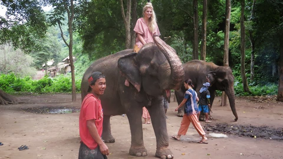 Lifestyle Enthusiast - Riding Elephants in Thailand