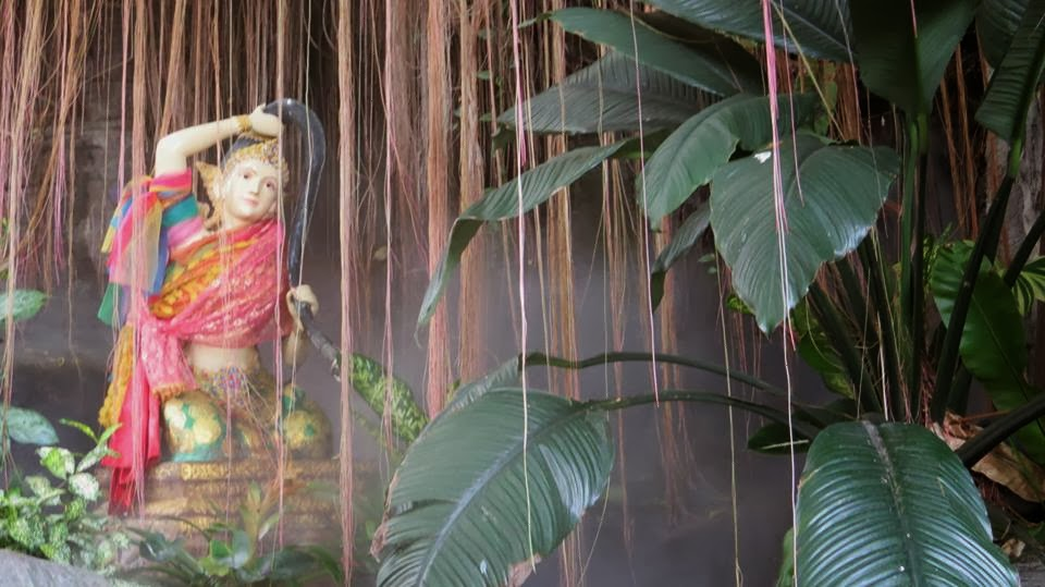 Lifestyle Enthusiast - Display of god through the vines and leaves