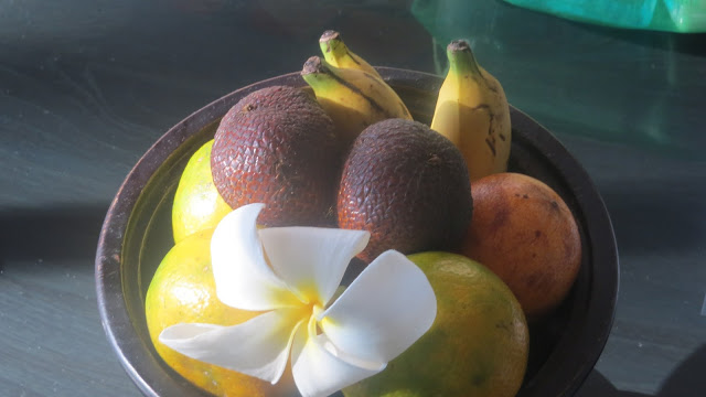 Lifestyle Enthusiast - The Damai, Lovina, Bali - Organic fruits